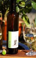 Muscaris 2020 trocken Ökowein Weißwein