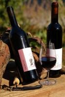 Upups Epops Rotwein Jahrgangscuvee 2 Flaschen