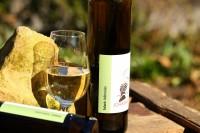 Solaris 2020 halbtrocken Biowein Weißwein