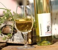 Muscaris 2019 lieblich Weißwein