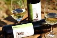 Solaris 2020 trocken Biowein Weißwein